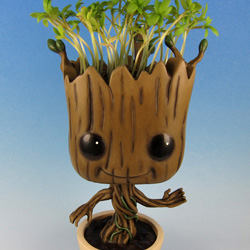 Groot cress hair
